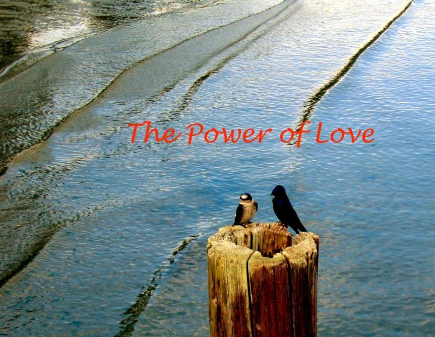 The Power ofLove